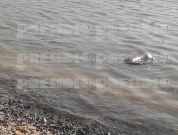 Personas se topan con un ahogado en el puerto de abrigo de Sisal