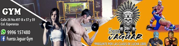 baner fuerza maya lucha libre.jpg