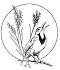 Champaign Co Audubon Society.jpg