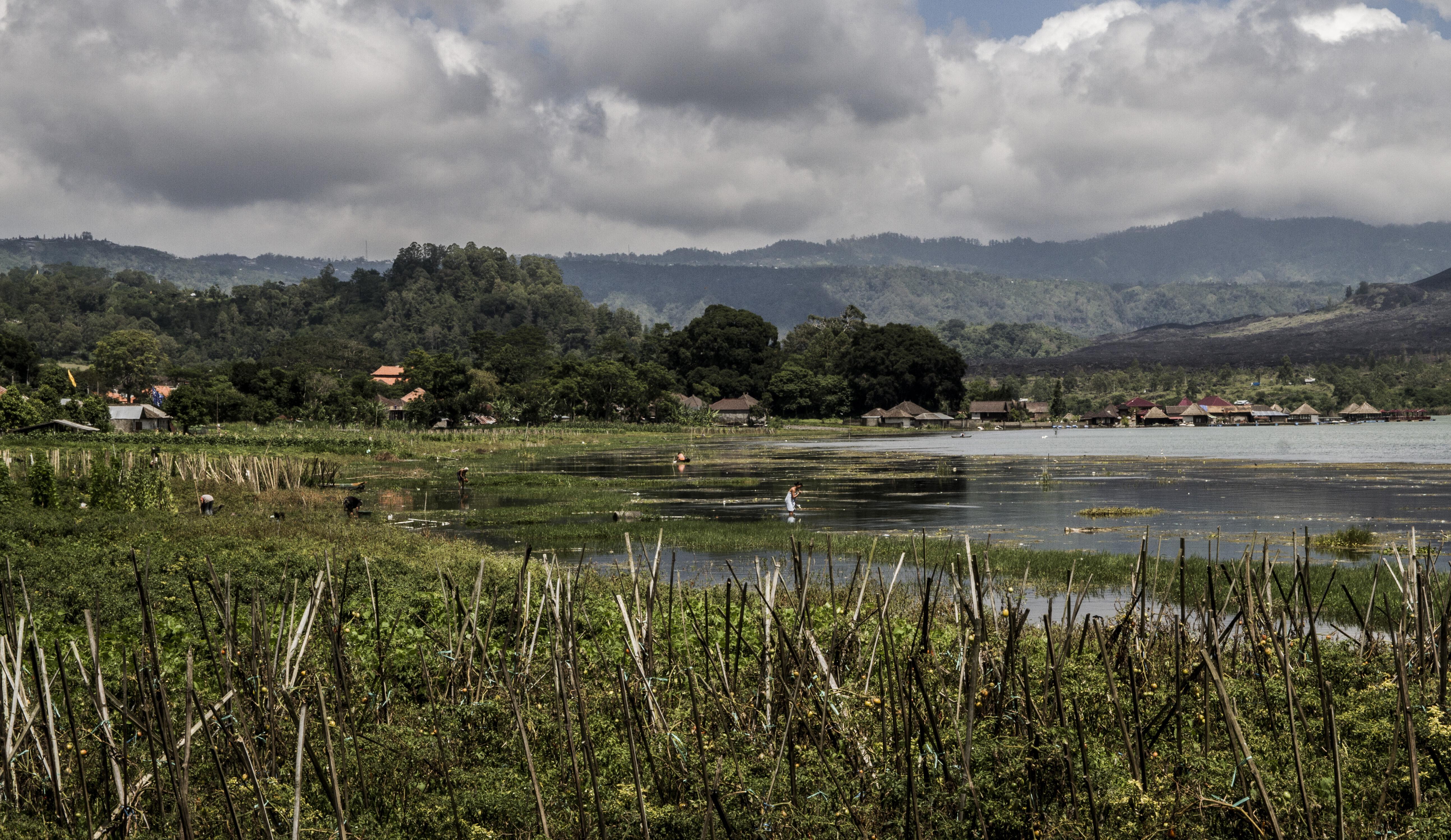 Lake Batur_3