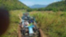 buggy 4.jpg