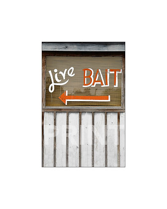 """Live Bait"" Moss Point, Mississippi"