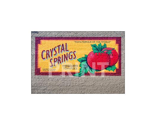 """Crystal Springs Tomatopolis Mural"" Crystal Springs, Mississippi"