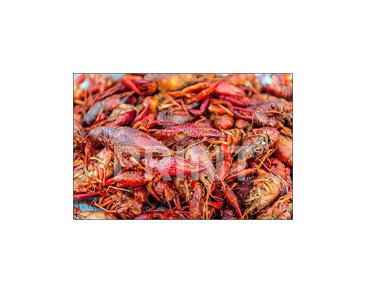 """""""Crawfish"""" (Detail)"""