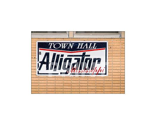 """Alligator Town Hall"" Alligator, Mississippi"