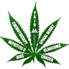 medical-marijuana-pain-relief.jpg