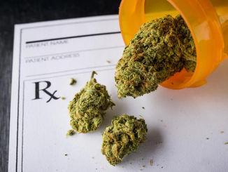 Medical-Marijuana-Disposal.jpg