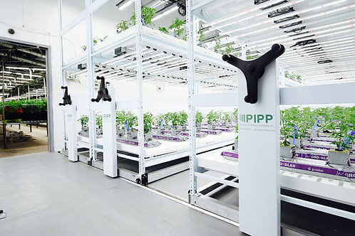 Tiered Cannabis Growing Racks that Move