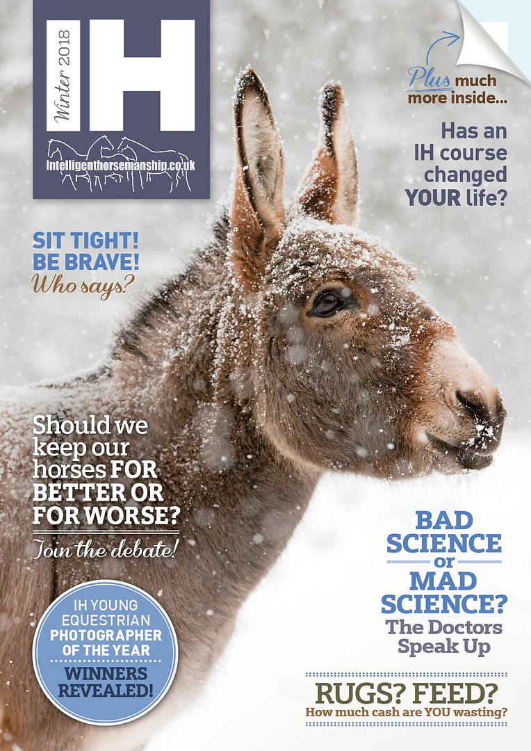 IH Magazine Winter 2018 cover.jpg