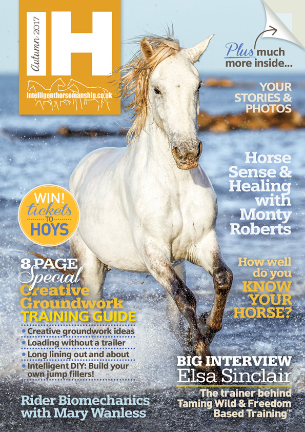 IH magazine Autumn 2017 cover small.jpg