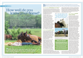 Animal Training: How Well Do You Know Your Horse
