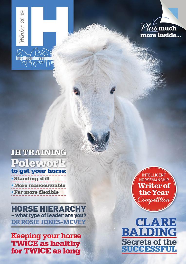 IH Magazine Winter 2019 cover.jpg