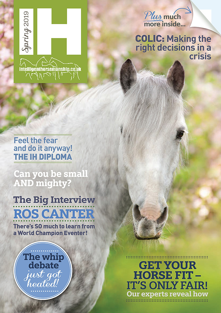IH Magazine Spring 2019 cover.jpg