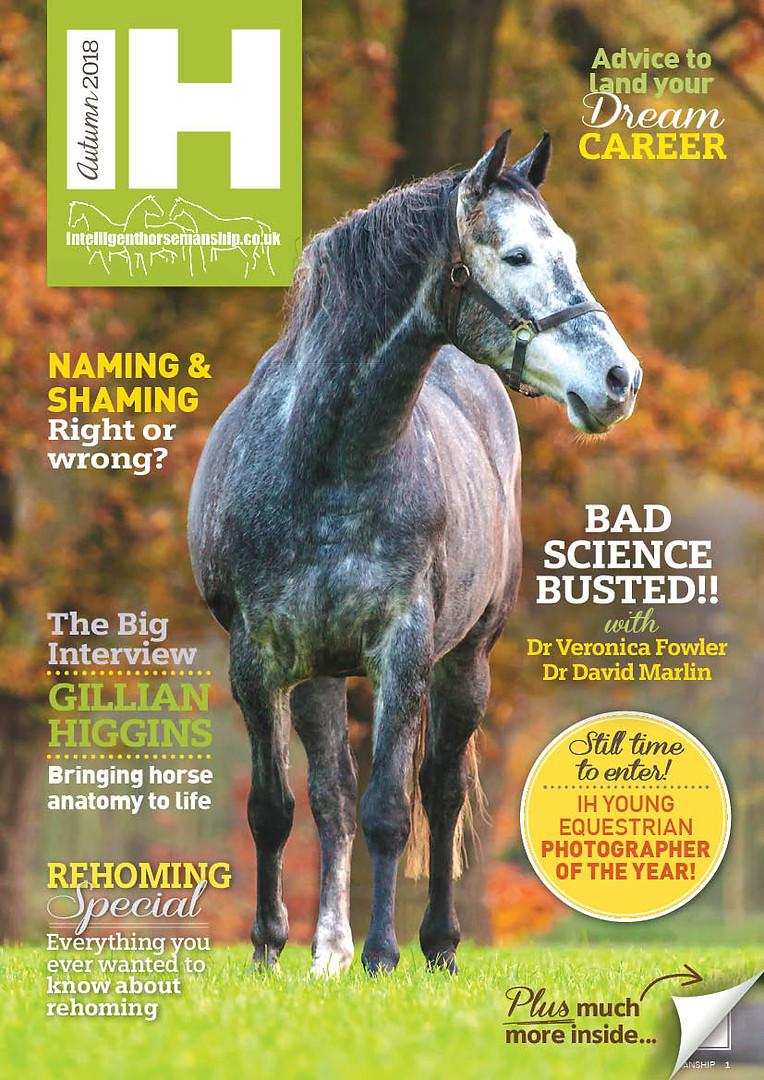 IH Magazine Autumn 2018 web cover.jpg