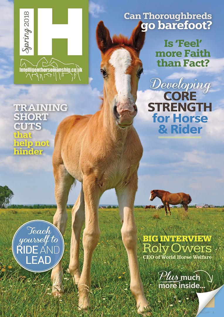 IH magazine Spring 2018 web cover.jpg