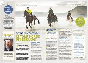 Fitness Feature: Intelligent Horsemanship Magazine