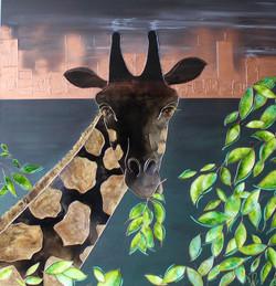 VENDU La ville qui n'aimait plus les girafes Hommage à Anne Innis Dagg