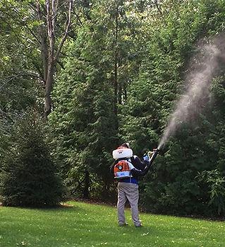 mosquito-spraying.jpg