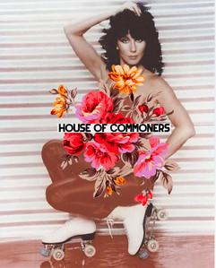 House of commoners 1.jpg