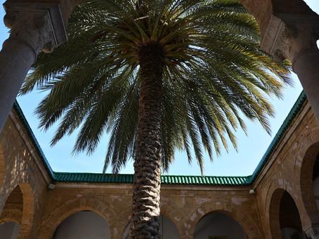 The Medrassas of the Medina Tunis