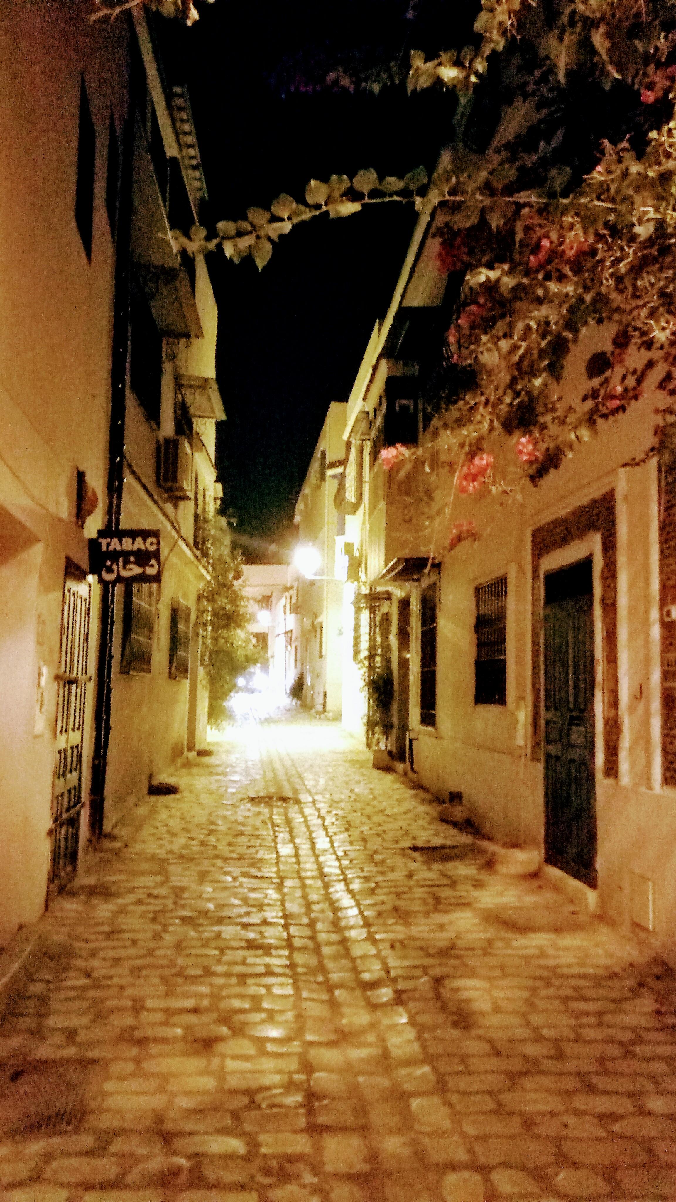 Rue du riche, Tourbet El Bey, 1008 Tunis