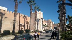 Excursions Elpatio courtyard house tunis