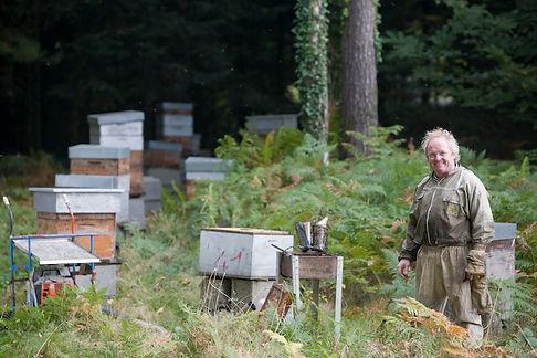 Découvrez le travail au rucher de La Maison de l'Abeille à La Roche-Bernard dans le Morbihan