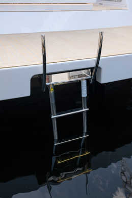Swim ladder