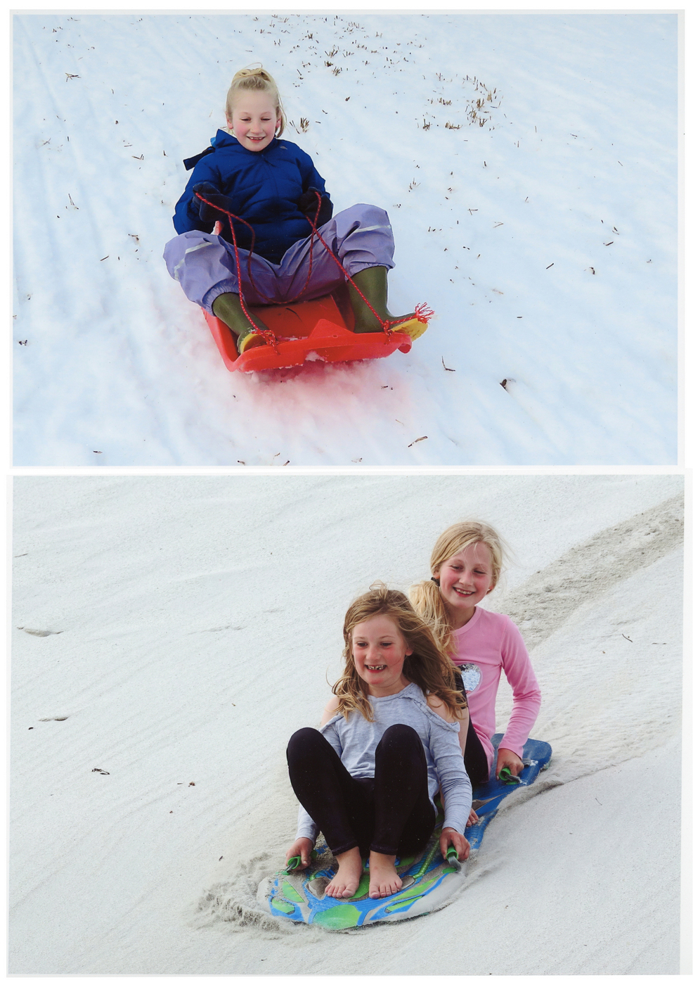 Summer Winter Sledging