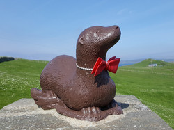 Sartorial Otter Sands of Wrigh
