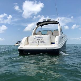 MisBeeHavin' Again Boat Decal