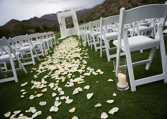 Ivory rosepetals scattered on grass