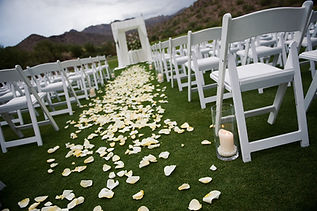 Wedding Aisle Rose Pettals