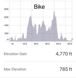 bike elevation.jpg