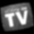 LADY_ON_TV_TILTED_GLITTER_LOGO_edited.pn