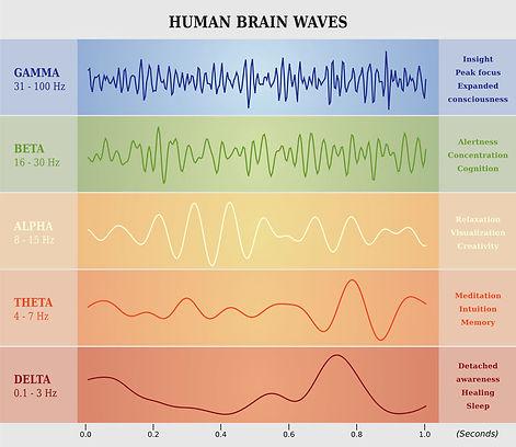 Human Brainwaves.jpg