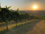 wijnproeverij Tommaso & Carmela.jpg 4 jp