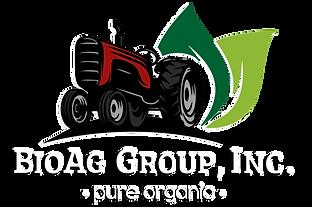logo V10.png