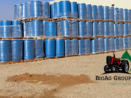 BioAg Group Accumulates CBD As Demand Continues To Grow