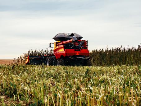 BioAg Group, Inc. Announces First Crop Harvest