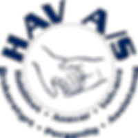 cropped-havas-logo-200x200.png