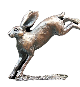 RC007-ú95_Richard_Cooper_Small_Hare_leap