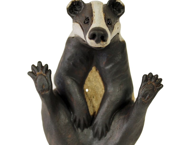 Pippa Hill - Badger Scratching Tummy