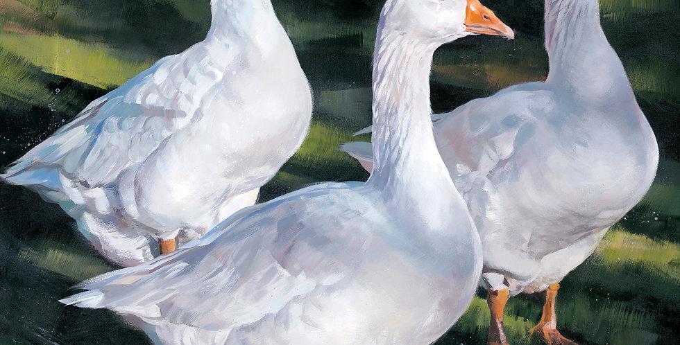 Debbie Boon - Goosey Goosey Gander
