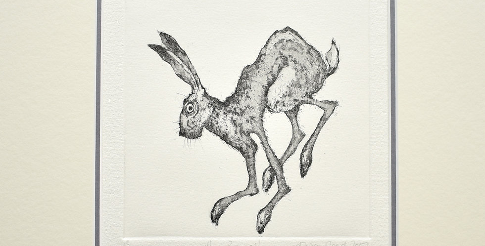Alison Read - Hare Brained