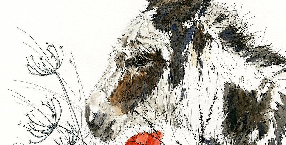 Anne Gilbert - Annie Donkey