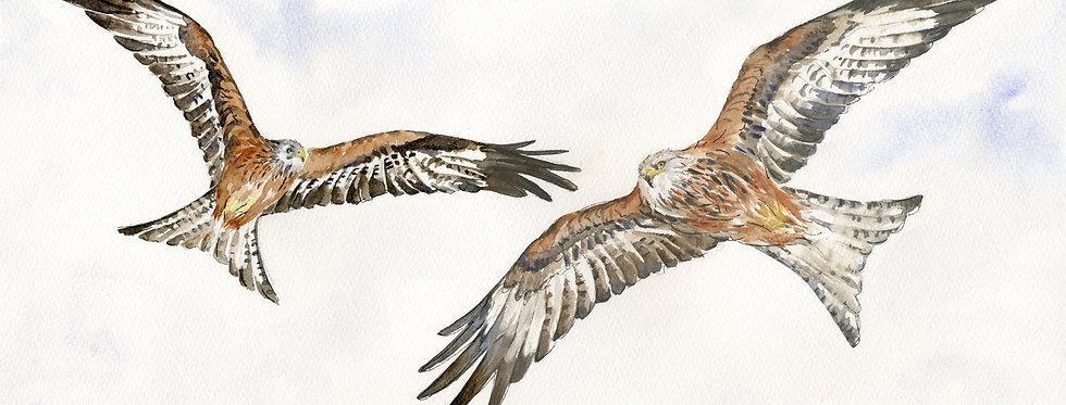 Anne Gilbert -Two Kites Flying