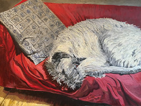 Augie on Sofa