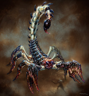AndyPark_scorpion.jpg