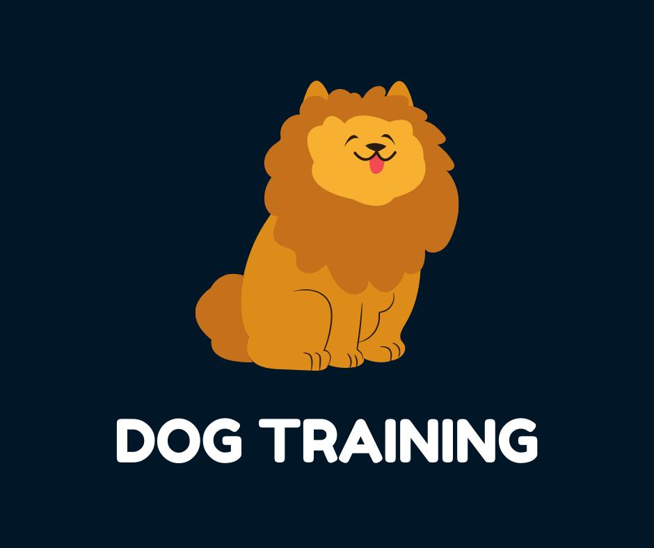 1 to 1 Virtual Training